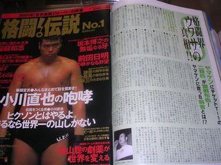 格闘伝説No.1